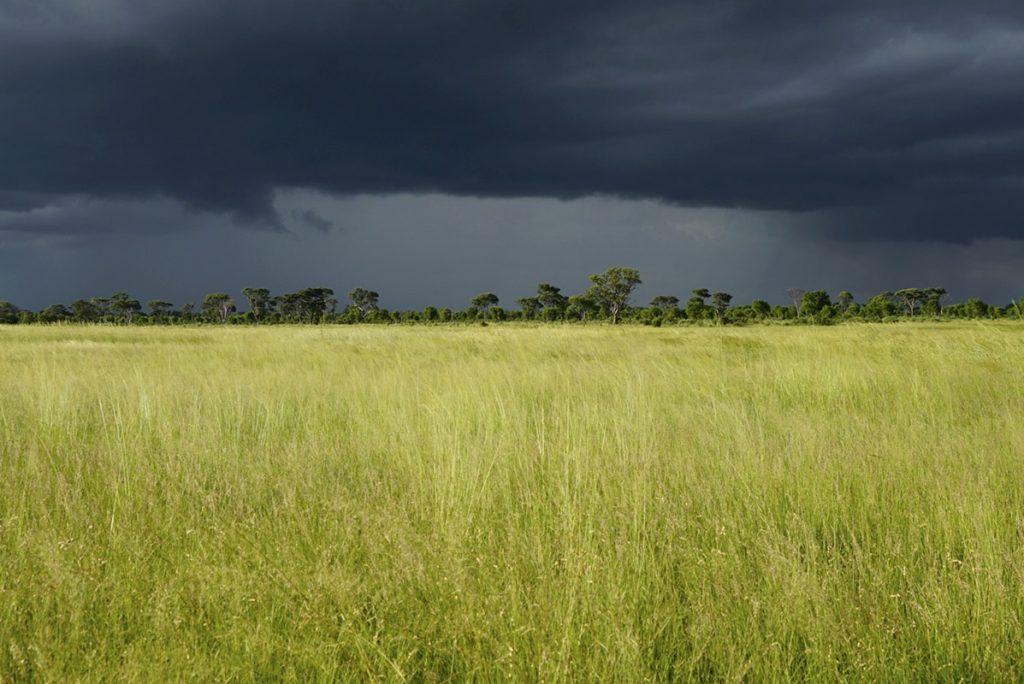 Tasimba - Mother Nature - Landscape