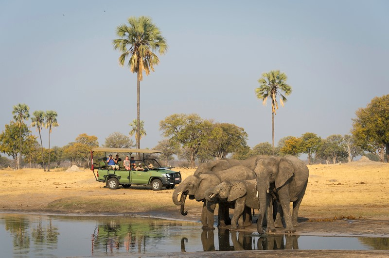 Tasimba Safari - Longer Stays - Elephants at waterhole